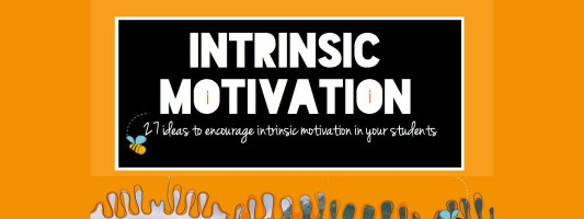 Extrinsic Motivation in the Workplace